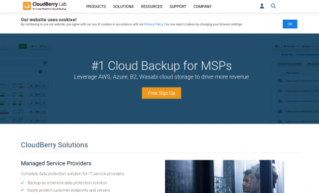 Cloudberrylab.com Server Backup